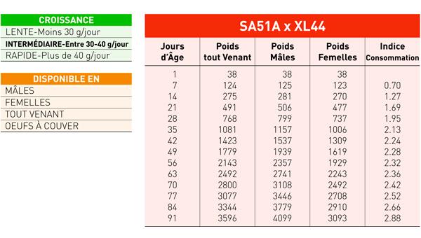 FICHA-XL451_fr