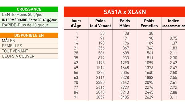 ficha-XL451N_fr