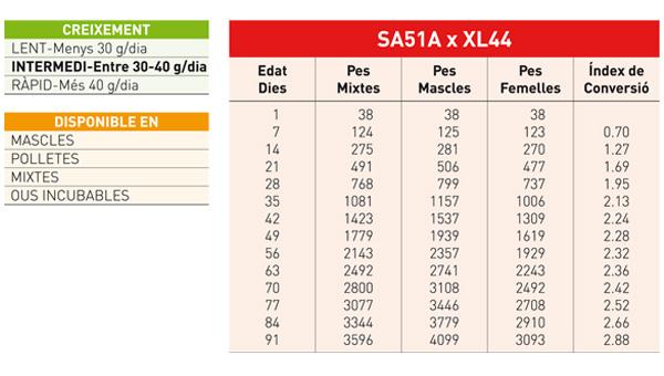 fitxa-XL451